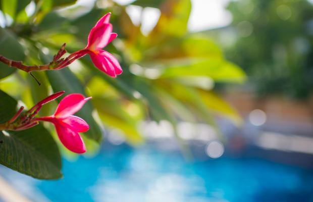 фотографии отеля P.K. Resort & Villas Jomtien Beach изображение №23