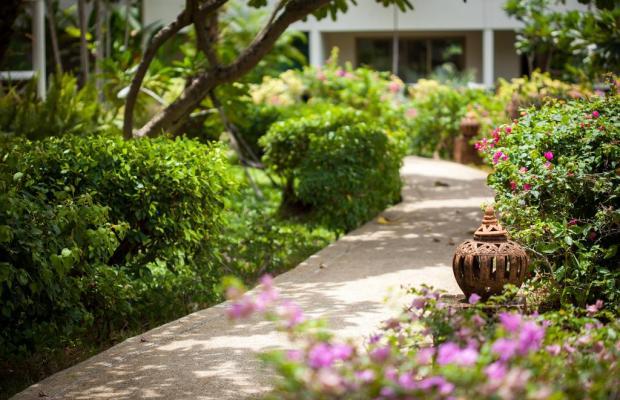 фотографии отеля Blue Lagoon изображение №11