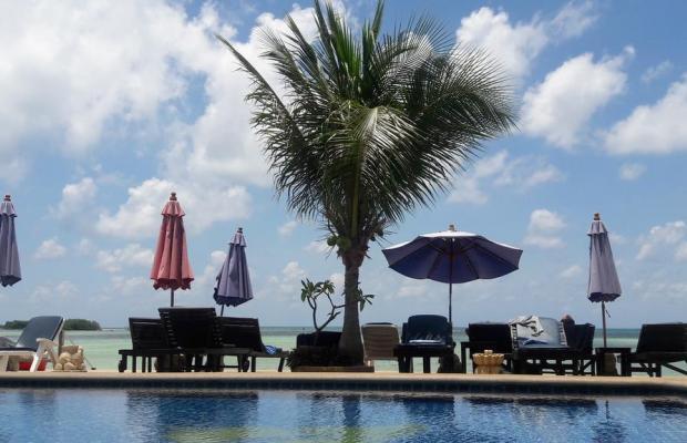 фотографии отеля Papillon Resort изображение №3