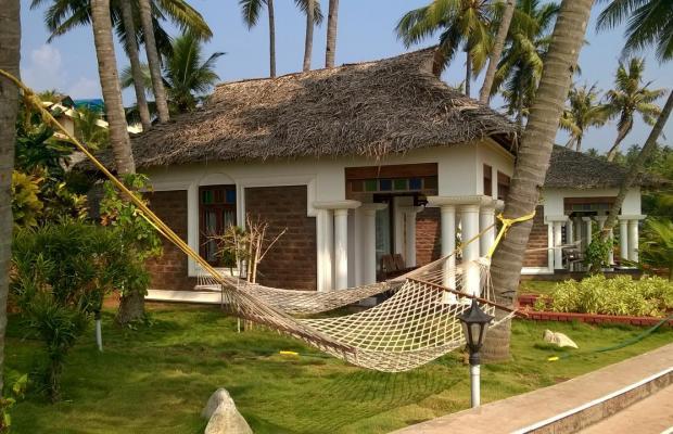 фотографии отеля Palm Tree Bungalow изображение №15