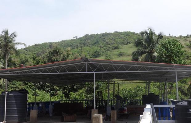 фото отеля Shiva Ashvem (ex. Ashoka Ashvem) изображение №17