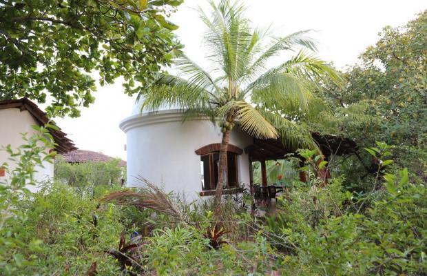 фотографии отеля Jivana Plantation (ex. Yab Yum @ Jivana Plantation) изображение №7