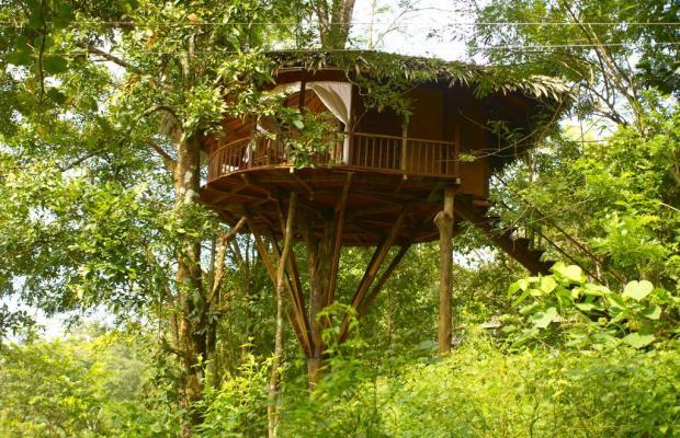 фото отеля Rainforest Boutique Resort изображение №17