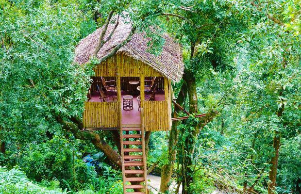 фотографии отеля Tea Valley изображение №59