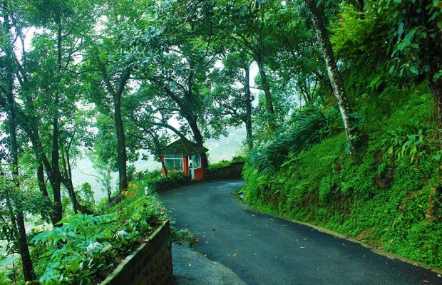 фотографии отеля Tea Valley изображение №51