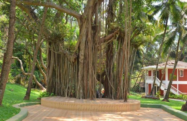 фото отеля Bambolim Beach Resort изображение №37