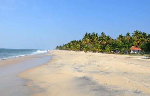 фото Abad Turtle Beach изображение №10