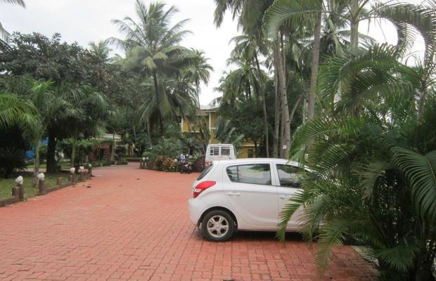 фото Palm Resort изображение №6