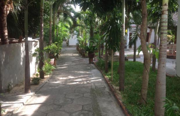 фотографии отеля Ngoc Duy изображение №35
