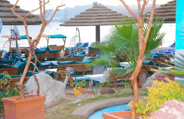 фото Red Sea Hotel (ех.Oasis Red Sea) изображение №18