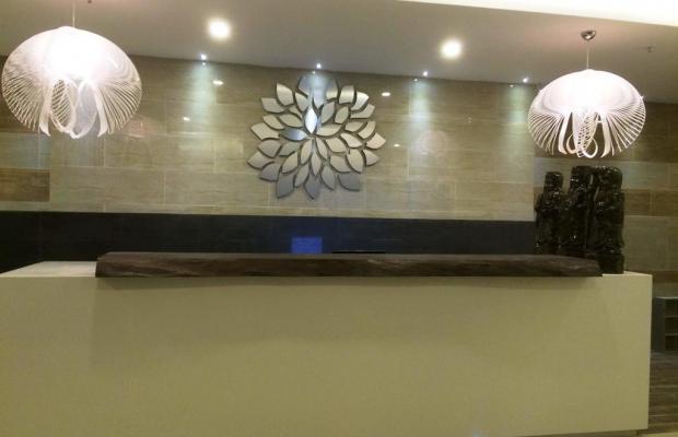 фотографии отеля Daisy Hotel изображение №11