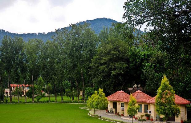 фотографии отеля Corbett Ramganga Resort изображение №11
