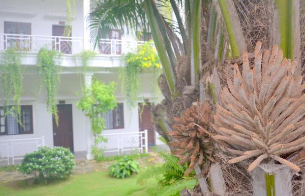 фотографии отеля Lavita Hotel изображение №11