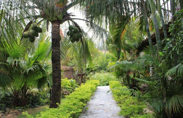 фото TTC Premium Ke Ga  (ex. Pegasus Resort; ех. Hana Beach Resort) изображение №34