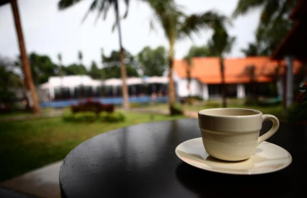 фото Terrace Resort изображение №2