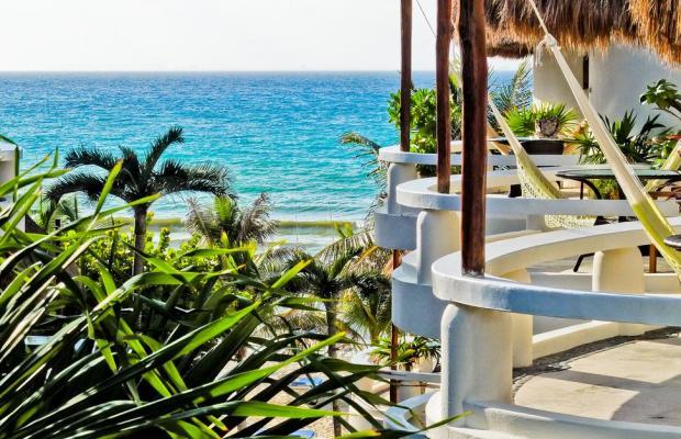 фото отеля Playa Palms Beach Hotel  изображение №13