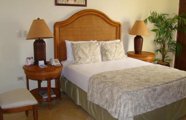 фото отеля Blue Palms Suites (ex. Blue Parrots Suites) изображение №21