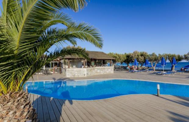 фотографии отеля Dessole Blue Star Resort (ex. Blue Star & Sea) изображение №31