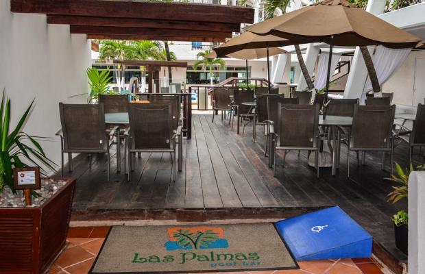 фотографии отеля Flamingo Cancun Resort & Plaza изображение №23