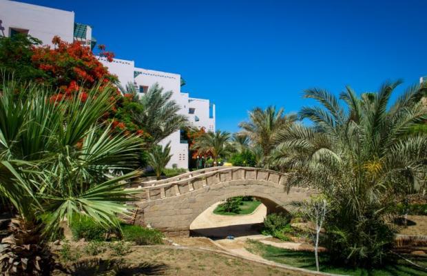 фотографии Zahabia Hotel & Beach Resort изображение №32