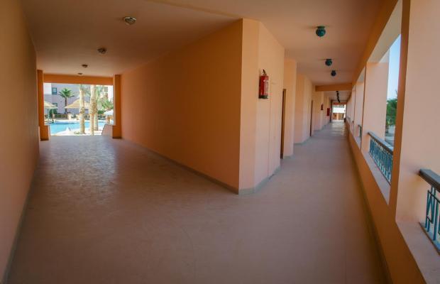 фото Zahabia Hotel & Beach Resort изображение №6