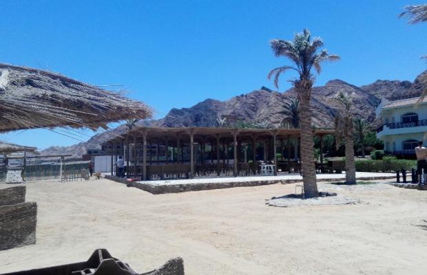 фотографии Sea Sun Hotel изображение №8