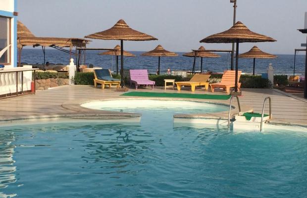 фото отеля Seaview Hotel Dahab изображение №5