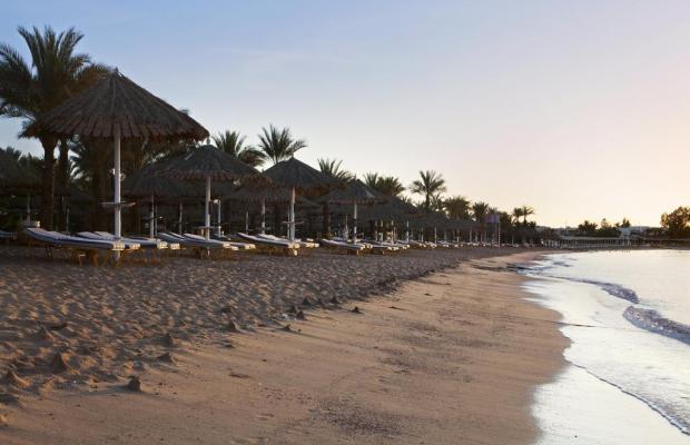 фотографии отеля Hilton Sharm Dreams Resort изображение №19