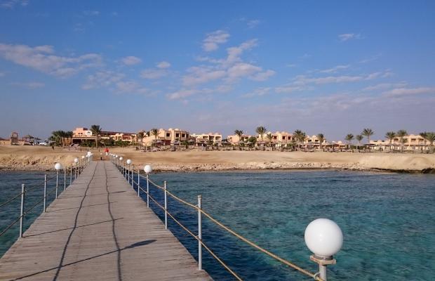 фото Wadi Lahmy Azur изображение №6