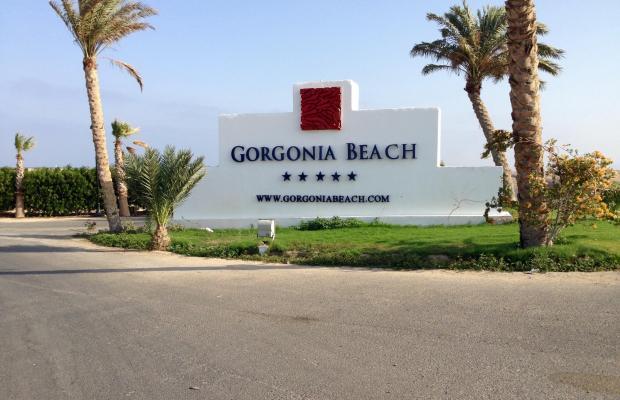 фотографии отеля Gorgonia Beach Resort изображение №31