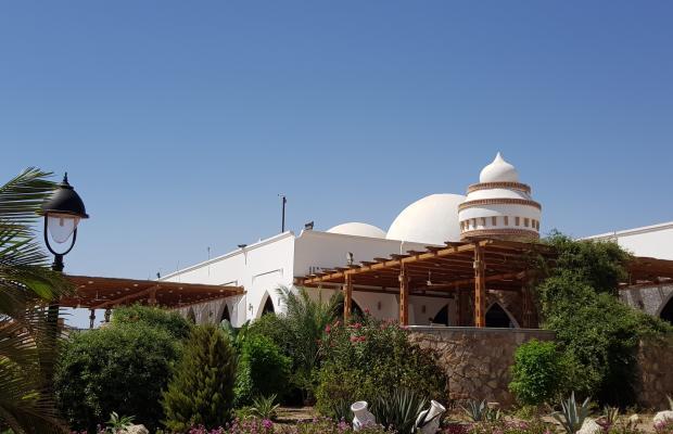 фото отеля Gorgonia Beach Resort изображение №25