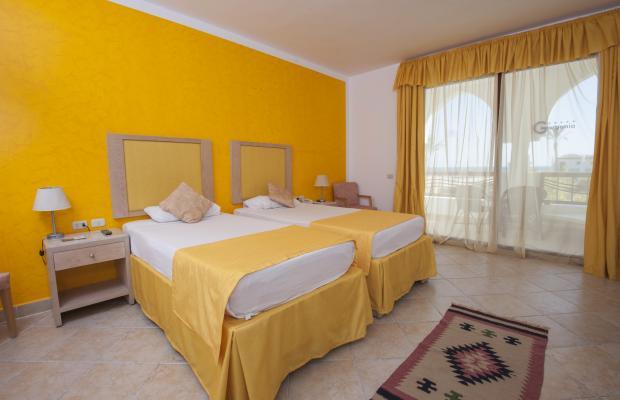 фотографии отеля Gorgonia Beach Resort изображение №7