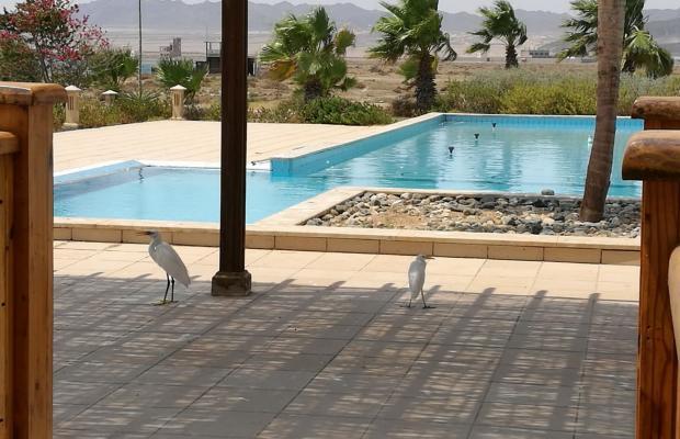 фотографии отеля Lahami Bay Beach Resort & Gardens изображение №43