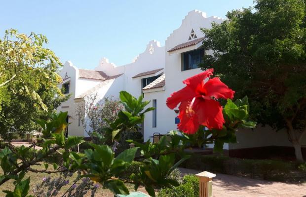 фото Lahami Bay Beach Resort & Gardens изображение №26