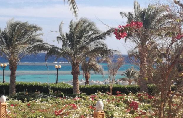 фото Fantazia Resort Marsa Alam (ex.Shores Fantazia Resort Marsa Alam) изображение №10