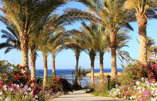фото отеля Brayka Lagoon Resort изображение №17