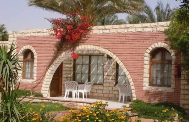 фото отеля Aladdin Beach Resort (ex. Dessole Aladdin Beach Resort) изображение №5