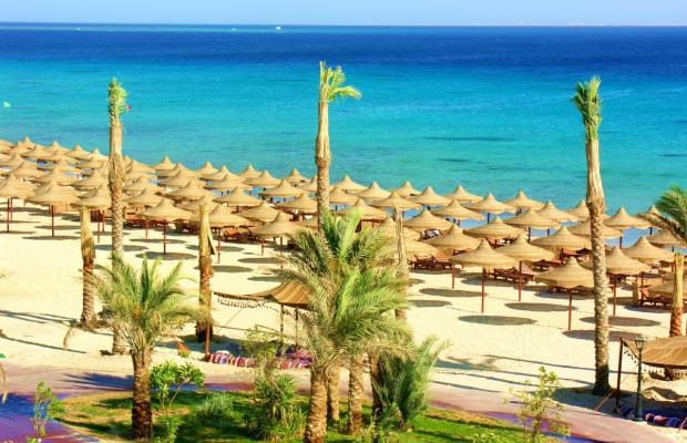 фотографии Pyramisa Sahl Hasheesh Beach Resort (ex. Dessole Pyramisa Beach Resort Sahl Hasheesh, LTI Pyramisa Beach Resort Sahl Hasheesh) изображение №72