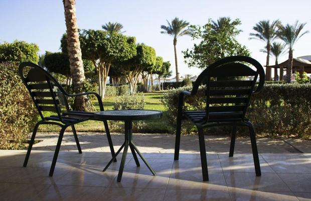 фотографии Pyramisa Sahl Hasheesh Beach Resort (ex. Dessole Pyramisa Beach Resort Sahl Hasheesh, LTI Pyramisa Beach Resort Sahl Hasheesh) изображение №24