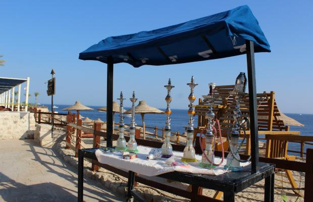 фотографии Sharm Resort (ex. Crowne Plaza Resort) изображение №4