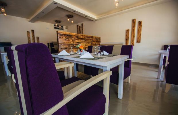 фотографии отеля Captain's Inn (ex. Marina El Gouna) изображение №7