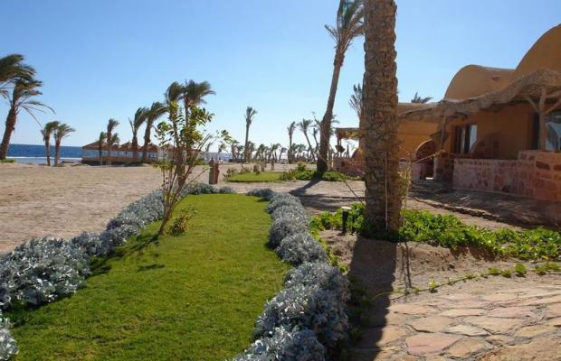 фотографии отеля Swiss Inn Plaza Resort Marsa Alam (ex. Badawia Resort) изображение №11