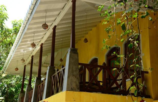 фото отеля Thambapanni Retreat изображение №21