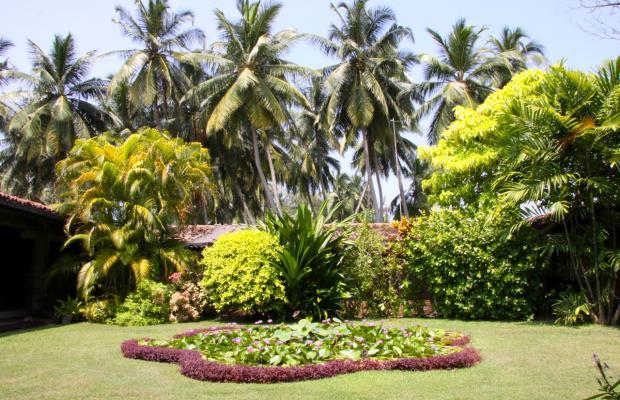 фото отеля Sri Budhasa Ayurveda Resort Ayurveda Walauwa изображение №13