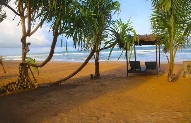 фотографии Whispering Palms изображение №4