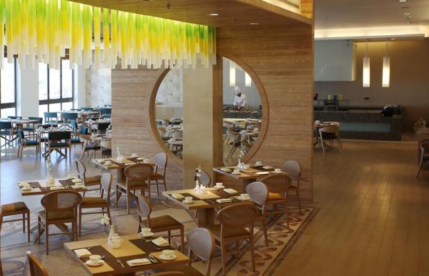 фото Hilton Dead Sea Resort & Spa изображение №34