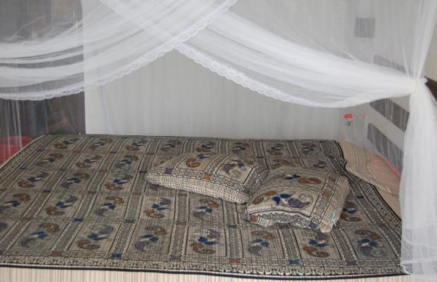 фотографии Lumi House изображение №20
