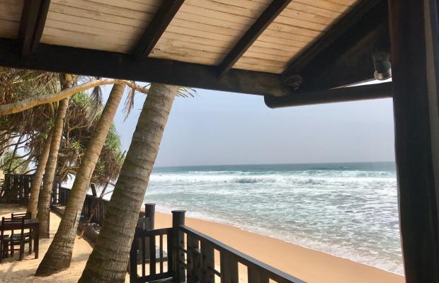 фотографии отеля Dalawella Beach Resort изображение №11