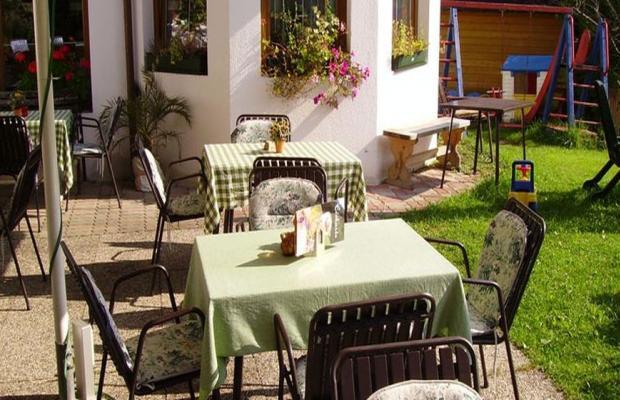 фотографии Alpina Hotel (ex. Alpina Pension) изображение №4
