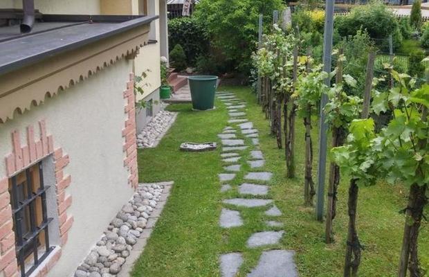 фото Haus Elisabeth изображение №6